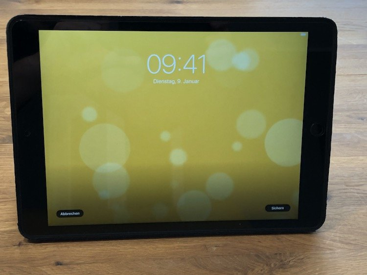 Apple iPad (10,2